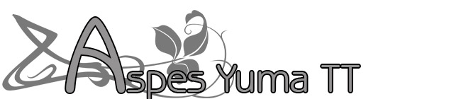 Aspes Yuma Monoscocca TT
